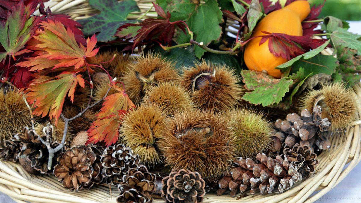 feste d'autunno